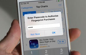 enter passcode to authorize fingerprint ourchases
